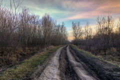 Old country road at the autumn sunset light Royalty Free Stock Photography