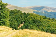 Old country road through hills in to the forest. Old country road through hills in to the primeval beech forest. nature scenery with trees along the way. sunny stock photos