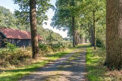 Old country road with tall trees on both sides. Old Dutch country road with tall trees on both sides. On the left is a historic barn from the second half of the stock photo