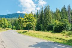Old country road in to the mountains. Nature scenery with trees along the way. sunny summer landscape with clouds on a blue sky royalty free stock photography