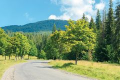 Old country road in to the mountains. Nature scenery with trees along the way. sunny summer landscape with clouds on a blue sky royalty free stock image