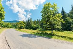 Old country road in to the mountains. Nature scenery with trees along the way. sunny summer landscape with clouds on a blue sky stock photography
