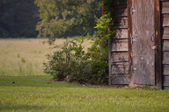Old Country Smokehouse Stock Photography