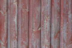 Old country wooden door texture rustic Stock Images
