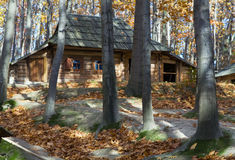 Old country wooden farmstead in autumn forest Stock Photos