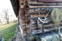 Old countryside house wooden wall details with cow skull Royalty Free Stock Images