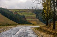 Old countryside road on rainy day. Gloomy autumn scenery in mountainous area Stock Photo