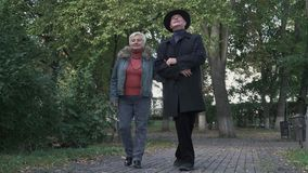 Old couple admire nature in the park
