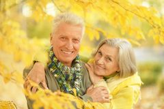 Old couple at autumn park Royalty Free Stock Photos
