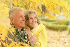Old couple at autumn park Stock Photos