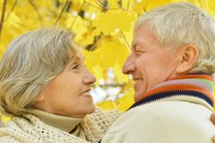Old couple at autumn park Stock Photography