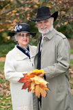 Old couple in autumnal park Stock Images