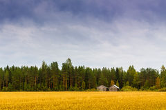 Old Couple. A couple of old barn houses leaning each other on the edge of a hay field stock image