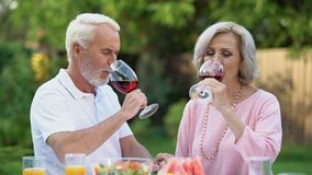 Old couple celebrating anniversary, drinking wine, everlasting love relations. Stock footage stock video