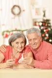 Old couple celebrating new year Royalty Free Stock Photos