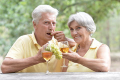 Old couple drinking wine Stock Photography