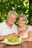 The old couple drinking Stock Photography