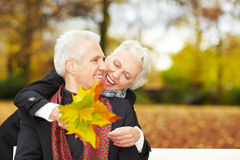 Old couple in a forest. Happy senior couple in an autumn forest Stock Image