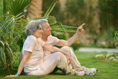 Old couple on grass. Loving elder couple sitting on a background of palms Stock Image