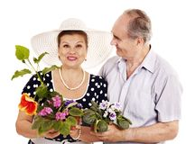 Old couple holding flower. Royalty Free Stock Images