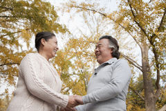 Old couple holding hands and smiling in park Royalty Free Stock Image