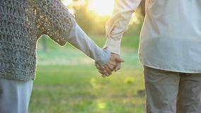 Old couple holding hands and walking in park, romantic date, love and trust stock video footage