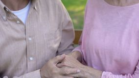 Old couple kissing, happy marriage, mature love, meeting old age together stock video