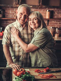 Old couple in kitchen Stock Photography