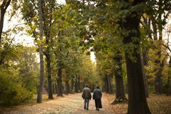 Old Couple in Love Walking in Park Autumn. Old Couple in Love Walking in Park Herestrau , Autumn Stock Photo