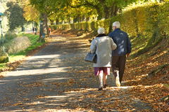 Old couple in the park. Old couple walking in a beautiful autumn day in the park, covered by falling leaves royalty free stock photos