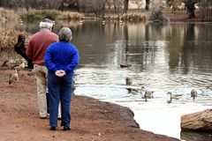 Old couple at pond Royalty Free Stock Images