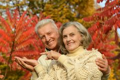 Old couple posing at autumn park Royalty Free Stock Images