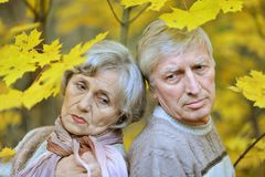 Old couple posing at autumn park Royalty Free Stock Photo