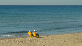 Old Couple relaxing by the sea royalty free stock photos