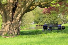 Old couple are resting on bench in a citypark north netherlands on a sunny first spring day. Old elderly couple women whose husband sitting in a wheelchair next Stock Image