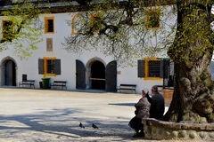 Old couple sitting under the tree. An old couple is relaxing under the tree in Salzburg Stock Photos
