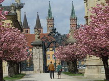 Old Couple in Spring. An old couple walks along an alley of trees in spring with historic buildings in the background Stock Photography