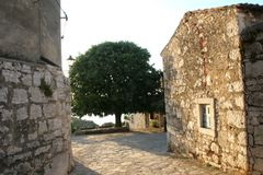 Old courtyard house. Tree in old courtyard house - Alley in a mediterranean village Royalty Free Stock Photos