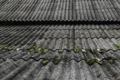 Old and covered with green moss wavy roof slates covers the barn stock image