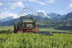 Old covered wagon in the Absaroka Mountains of Wyoming. An old covered wagon sits in front of the Absaroka Mountains of Wyoming Royalty Free Stock Photo