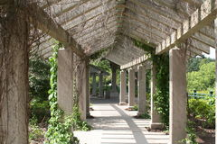 Old covered walkway. An old covered walkway with vines Royalty Free Stock Photography