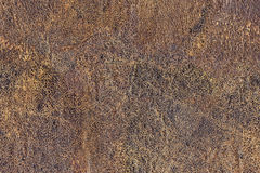 Old Brown Cowhide Wizened Flaky Coarse Grunge Texture. Photograph of old, weathered, rough, cracked, wrinkled, coarse grained, exfoliated cowhide texture sample Stock Photos
