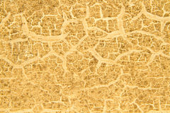 Old crack painted wood texture background Royalty Free Stock Images