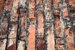 Old cracked bricks wall background Royalty Free Stock Photography