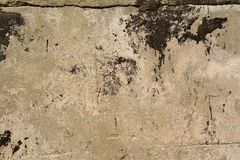 Old, cracked concrete surface Stock Photography