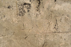 Old, cracked concrete surface Royalty Free Stock Image