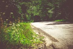 Sunny Cracked Rural Road Filtered. Old cracked, damaged asphalt road in countryside at sunny day, vintage background Royalty Free Stock Images