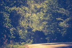 Sunny Cracked Rural Road Filtered. Old cracked, damaged asphalt road in countryside at sunny day, vintage background Stock Photography