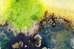 Old cracked decay wall background covered in green moss. And mold Royalty Free Stock Images