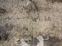 Old cracked and eroded plaster Royalty Free Stock Images